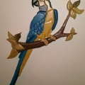 blue-white-macaw