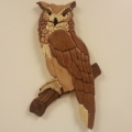 great-horned-owl-3