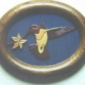 hummingbird-in-frame