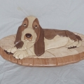 basset-hound-with-pillow