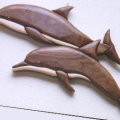 double-dolphins