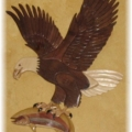 eagle-with-fish-2